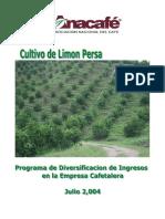 Cultivo de Limn Persa.pdf
