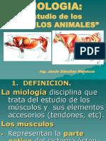 CLASES-DE-MIOLOGIA-ANIMAL[2] (1).ppt