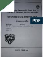 EjerciciosEsteganografia(rev).pdf