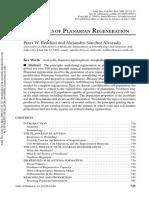 Planarian Regeneration Annurev.cellbio.2004.Reddien