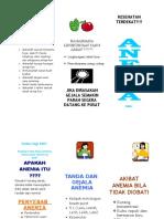 leaflet anemia.doc