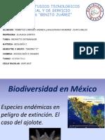 Biodiversidadenmxicoelcasodelajolote 150925025156 Lva1 App6891