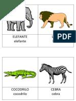 Affiches Des Noms Des Animaux.