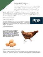 Strategi Pemasaran Telur Ayam Kampung