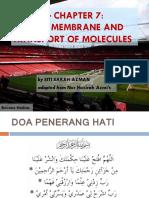 07 - Plasma Membrane & Transport of Molecules I