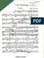 Tod Und Verklarung - String Parts