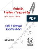 Produccion y Transporte de Gas Natural
