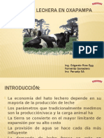 PRODUCCIÓN LECHERA EN OXAPAMPA.pptx
