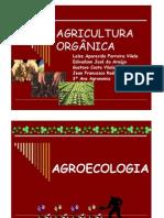 Agricultura_Orgânica_Slides