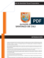 Manual de Identidad Visual 1