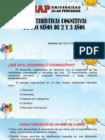 Características cognitivas de niños de 2 y 3 años ppt