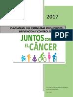 1...Cancer--plan de Trabajo de Cancer 2017