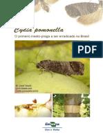 cydiapomonellaoprimeiroinsetopragaerradicado