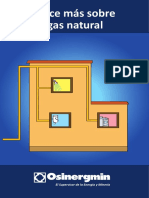 12 Gas Natural.pdf