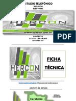 Hercon Consultores