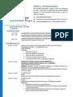 Curriculum-Vitae Ing Adrian Sifontes