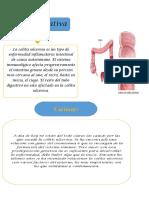 Colitis Ulcerativa