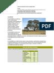 Trabajo Annia_plantas Bosque Seco