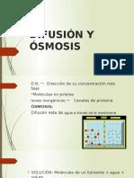 DIFUSIÓN Y ÓSMOSIS Expo