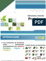 Proteinas-estructura y Funcion
