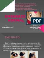 Lamins Embarazo Normal