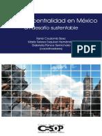Habitat y centralidad en México.pdf