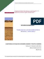 Estudio_viabilidad_biocombustibles.pdf
