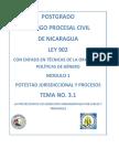 Proteccion Derechos Fundamentales Perez Tremps