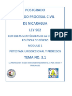 Proteccion Derechos Fundamentales Perez Tremps