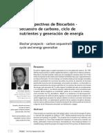 Las Perspectivas de Biocarbón -Ciclo de Nutrientes y Generador de Energia