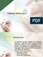 16258116-S-Metabolico-Diabetes-Mellitus-tipo-2.ppt