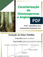 Caracterização Gimno Angiospermas Aula1 PDF