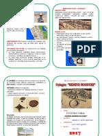 DIPTICO-CARAL.docx