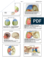 4 Anatomia Cabeza Usa 2017 Alumno.pdf