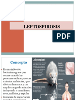 Leptospirosis, Bartonella y Peste