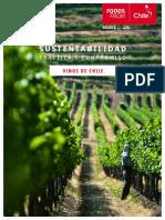 Informe Sustentabilidad Vinos de Chile