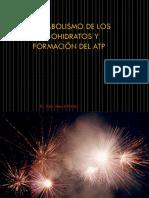 Metabolismo de Los Carbohidratos y Formación Del ATP