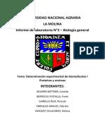 Informe 2_determinación Experimental de Biomoléculas i