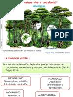 Celula Vegetal y Potencial Hídrico