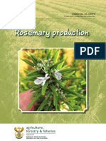 Prod Guide Rosemary