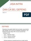 3.Neoplasia Intra Epitel-1913046071