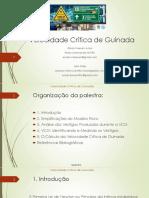 Wilson Toresan Jr - Velocidade Crítica de Guinada.pdf