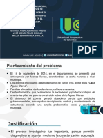Sustentación Puente Medellín Del Ariari