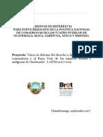 TDR Popularización de La Politica de Comadronasrv
