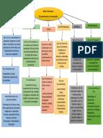Mapa Conceptual Emprendedor y La Innovación