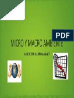 MICRO Y MACRO AMBIENTE.pptx