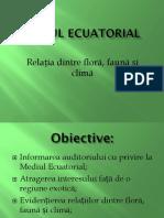 Mediul Ecuatorial
