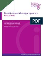 Breastcancerduringpregnancy(BCC).pdf
