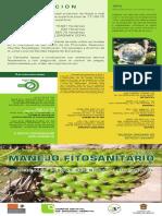 TRIPTICO NOPAL.pdf