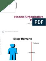 Modelo Organizativo Piramidal (base)